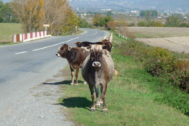 Azerbaijan road